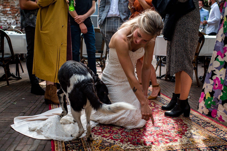 trouwen met hond Trouwfotograaf Amersfoort